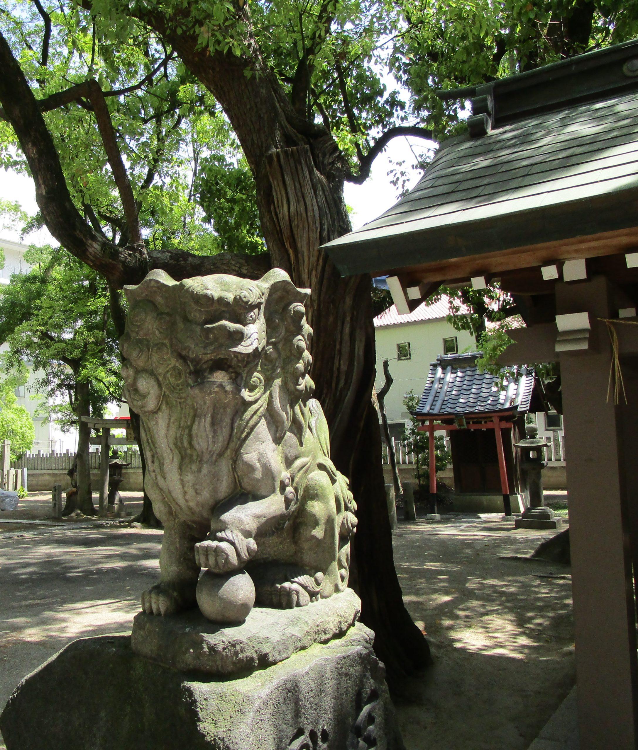 素盞烏尊神社の写真